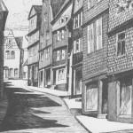 Photo 2: Vorderer Rebstock